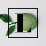 limon-culinario_logo.png