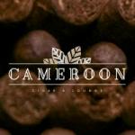 camerooncigarlounge_logo.png