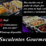 suculentos_logo.jpg